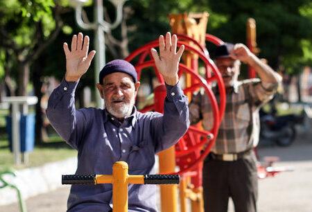 لزوم ایجاد پلتفرمهای ویژه سالمندان و توجه به ارتقاء سواد دیجیتالی آنها